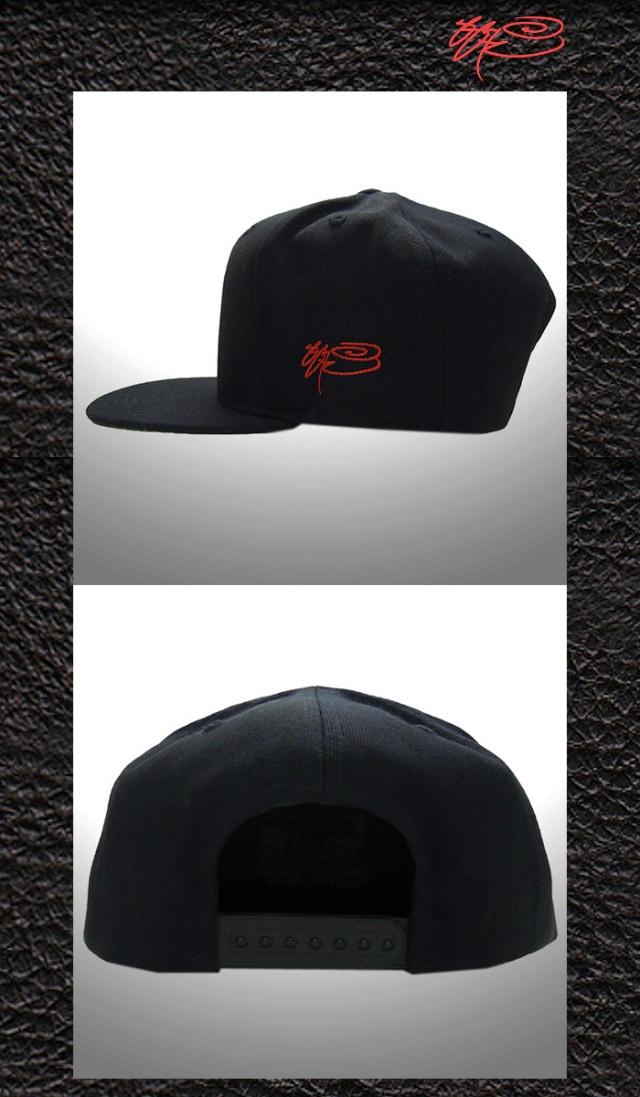 ssur-cap6-2
