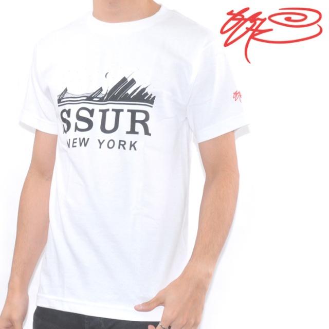ts-ssur-004-b